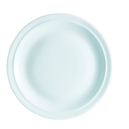 "VITREOUS 12"" 30.4cm NARROW RIM PLATE  F2281"